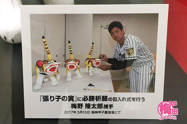 阪神タイガース優勝祈願