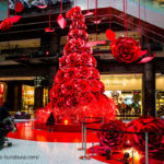 グランフロント大阪「Winter in Red」