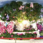 ホワイティうめだ 蝶が集まる花の泉