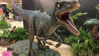 阪急うめだ本店 「恐竜ランド」開催!※2018年8月